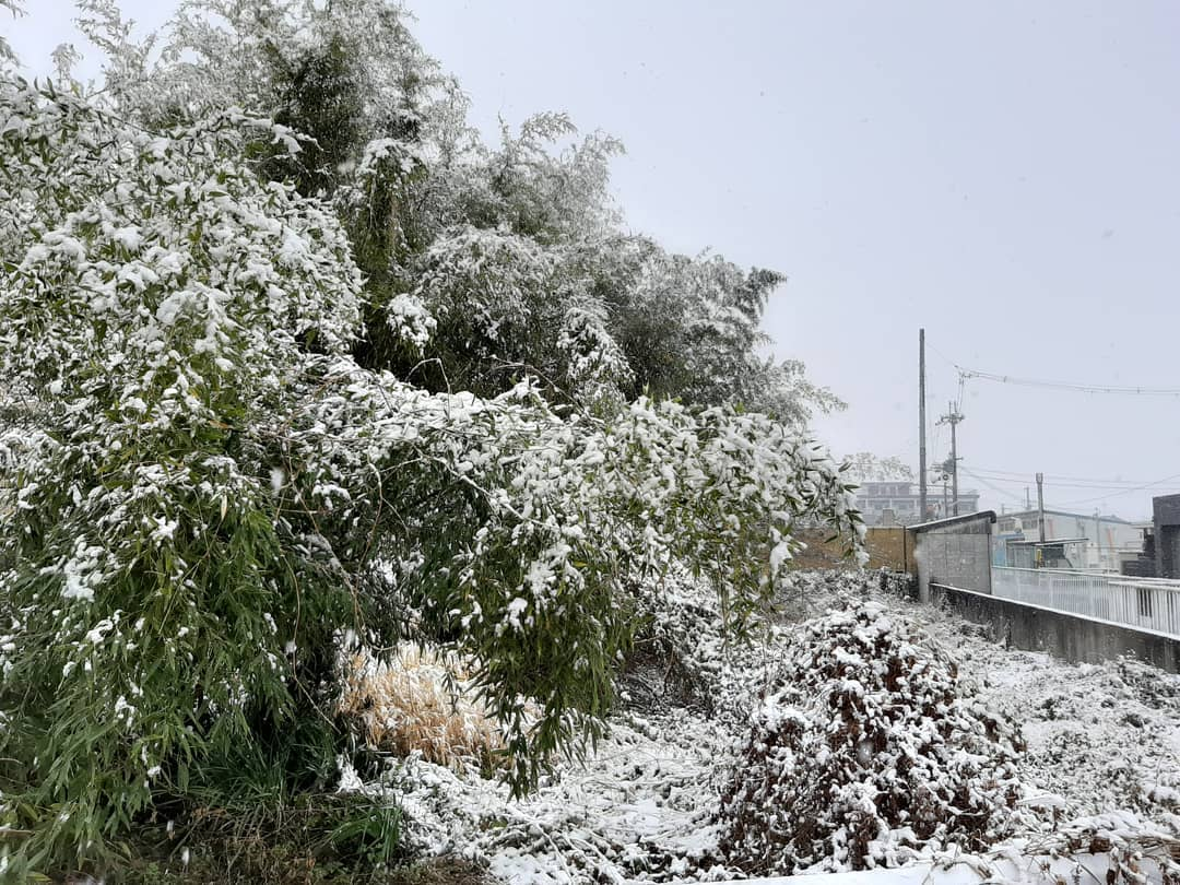 奈良県も️一面雪景色️皆さんのところはいかがですかこんな雪の中の移動お子様連れは大変。そして、このコロナと一緒に変わり行く時代。家にこもりっきりではないですか?でも子育ては変わらず。。 しなければいけない。わらべうたベビーマッサージを通して楽しい子育てしませんか?わらべうたベビーマッサージ研究会の認定者は子育ての大変さを理解していて自信をもって楽しい子育てに繋げたいという認定者ばかり。オンラインに切り替えて教室のやり方なども色々意見を出しあったり共有して皆様の楽しい子育てを応援いたしますオンラインでの無料の教室もご用意しておりますそして、家にいながら我が子のために勉強のために️そして、オンラインインストラクターになりたい!といった方が講習会にご参加いただいております️資格取得講習会詳細は こちらです ☟https://www.jyosansi.com/kousyukai/毎月無料ベビーセミナー開催中ですお子さんやお人形さんでまず体験してみませんか?ベビーセミナー終了後、質問タイムももうけさせていただいておりますベビーセミナーは、こちらです ☟https://www.jyosansi.com/o-taiken/#わらべうたベビーマッサージ #ベビーマッサージ #ベビマ#キッズマッサージ #胎教マッサージ #産後ダンス #オンラインベビマ #WEB講習会 #webセミナー #資格取得講座 ##楽しい子育て応援 #無料体験 #楽しい子育て #オンライン教室 #育児 #子育て(Instagram)